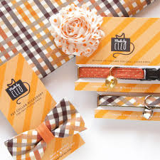 fall bow tie cat collar set field guide autumn plaid w