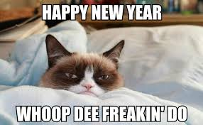 Happy New Year Meme - happy new year cat meme 28 images funny grumpy cat and new year
