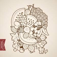 pencil sketch of fruits u2014 stock vector sentavio 117601556