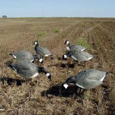 Homemade Goose Blind Canada Goose Decoys Ebay