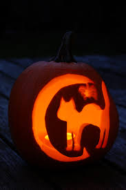 halloween images free download free images record light interior dark orange cat