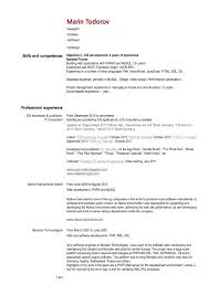 Sql Server Developer Resume Sample Qlikview Developer Resume Resume For Your Job Application