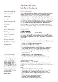 Sample Resume Accounting Assistant Sales Assistant Resume Assistant Account Resume Sales Assistant