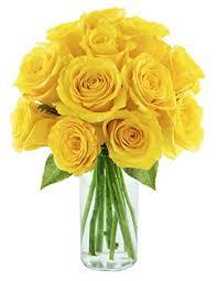 Long Stem Rose Vase Amazon Com Kabloom Bouquet Of Sunshine Yellow Roses 12 Fresh