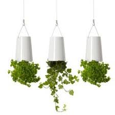 upside down hanging herb planters perfect for the kitchen or