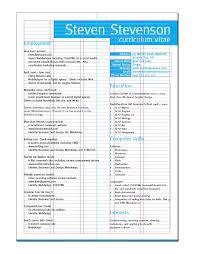 make my cv 25 best cv s images on resume design creative resume