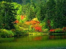 الطبيعة الخلابة images?q=tbn:ANd9GcS
