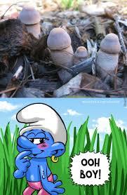 Baby Smurf Meme - dirty smurf memes memes pics 2018