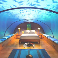 Best Cool Water Beds Images On Pinterest  Beds Waterbed - Water bunk beds