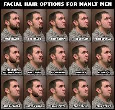 Facial Hair Meme - facial hair for manly men by jwcoffeeman on deviantart