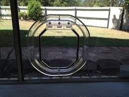 running into a glass door patio doors cat door for glass images interior doors excellent