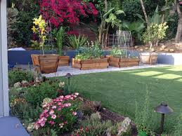 Tropical Backyard Design Ideas 62 Best Client Project Tropical Backyard Images On Pinterest