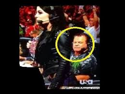 Paige Meme - wrestling memes package jerry lawler checks out paige s ass on