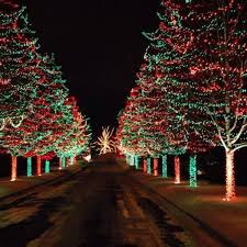 717 best christmas lights images on pinterest christmas time