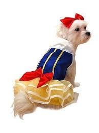 Boy Dog Halloween Costumes 14 Dog Halloween Costumes Images Dog Halloween