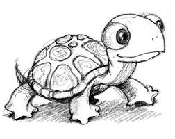 coloring charming drawings turtles coloring