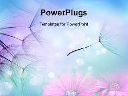 beautiful free powerpoint templates free red beautiful powerpoint
