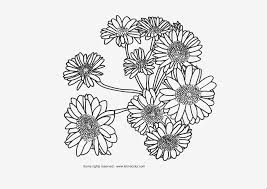 coloring pages cute realistic flower coloring pages coloring