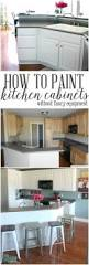 How To Renovate Kitchen Cabinets How To Paint Kitchen Cabinets No Painting Sanding Tutorials