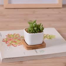 Rectangular Succulent Planter by Rectangular Planters Promotion Shop For Promotional Rectangular