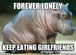 Hippo Memes - forever lonely keep eating girlfriends lonely hippo quickmeme