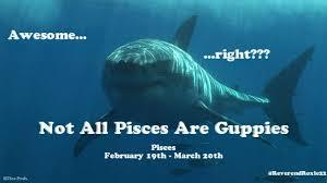Pisces Meme - pisces the ghetto allegory