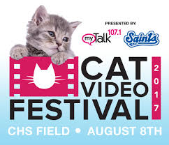 Minnesota traveling with cats images Cat video festival presented by mytalk 107 1 and the st paul saints jpg