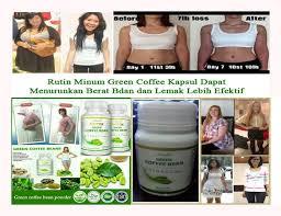 obat pelangsing badan exitox green coffee bean asli rahma farma com