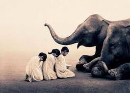 The Blind Men And The Elephant Heaven Can Wait The Blind Men And The Elephant Parable
