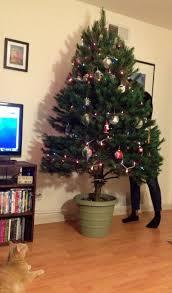 season how to make tree stand