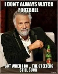 Steelers Suck Meme - 88 best steelers hate images on pinterest cincinnati bengals