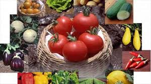 Home Vegetable Gardens by Know About Ideal Garden Soil For Home Vegetable Garden Factors