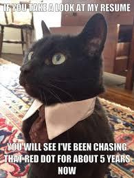 Business Cat Memes - black cat meme tumblr image memes at relatably com