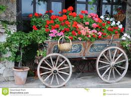 flowers garden city flowers in the cart stock photo image of front outdoors 44271658