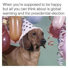 Wiener Dog Meme - politics dachshund memes by beangoods wiener dog memes