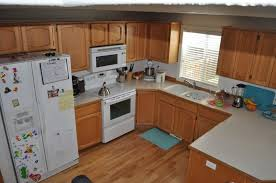 kitchen without island u shaped kitchen designs home design small remodel cabin