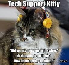 Tech Support Memes - tech support kitty viral viral videos
