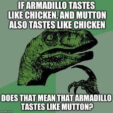 Armadillo Meme - philosoraptor meme imgflip
