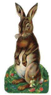 K Henblock Preis 17 Best Images About Easter Spring On Pinterest Wool Bunnies
