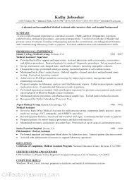 resume exles exles of resumes objectives free resume images
