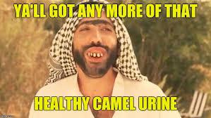 Arab Meme - ugly arab memes imgflip
