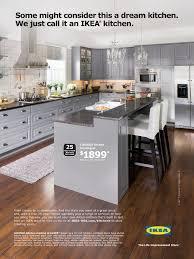 Ikea Kitchen Cabinet Ideas Ikea Usa Kitchen Cabinets Home Design