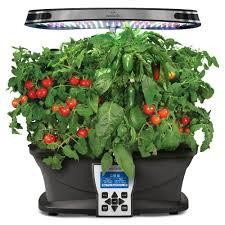 amazon com aerogarden salsa garden seed pod kit plant