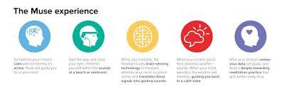 brain sensing headband muse the brain sensing headband black sports outdoors