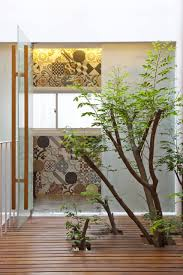 Small Indoor Trees home design creative living space decor ideas near indoor tree