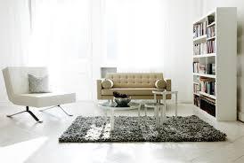 interior white style living room bookshelf fur carpet sofa chair