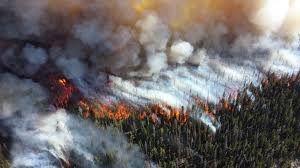 Wildfire Viewer by File Wildfire 14503287131 Jpg Wikimedia Commons