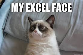 What Is A Meme Exle - my excel face my excel face misc interns memes quotes advice