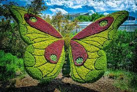 Botanical Gardens In Atlanta Ga by Giant Living Sculptures At Atlanta Botanical Gardens U0027 Exhibition