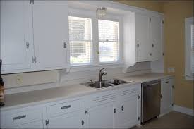 Cost To Paint Kitchen Cabinets Professionally by Kitchen Best Paint For Bathroom Cabinets Professional Spray